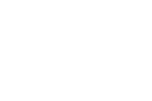 shadow_fight_2_logo